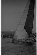 Round Ireland Yacht Race.  (R81)..1988..18.06.1988..06.18.1988..18th June 1988..The Round Ireland Yacht Race set sail from Wicklow today. Yachts from all over Europe took part in the start as the race got underway. The race is sponsored by Cork Dry Gin...Whyte and Mackay Drum K3797 is pictured under  full sail as the race gets underway at Wicklow today.