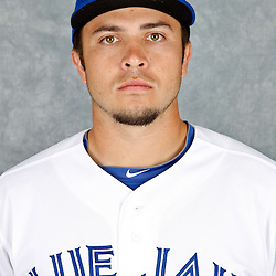 March 2, 2012; Dunedin, FL, USA; Toronto Blue Jays catcher Travis d'Arnaud (15) poses for a portrait during photo day at Florida Auto Exchange Stadium.  Mandatory Credit: Derick E. Hingle-US PRESSWIRE