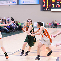3rd year guard Britton Belyk (11) of the Regina Cougars during the 5th year night on February  11 at Centre for Kinesiology, Health and Sport. Credit: Arthur Ward/Arthur Images