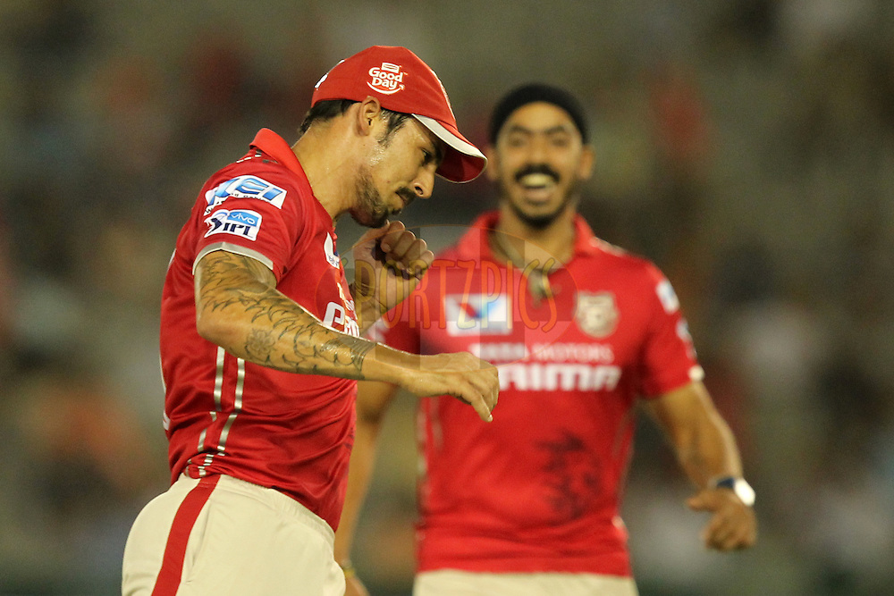 Mitchell Jonhson of Kings XI Punjab celebrates wicket of Suresh Raina of Gujrat Lions during match 3 of the Vivo Indian Premier League ( IPL ) 2016 between the Kings XI Punjab and the Gujarat Lions held at the IS Bindra Stadium, Mohali, India on the 11th April 2016Photo by Prashant Bhoot/ IPL/ SPORTZPICS