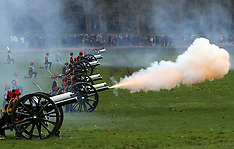 FEB 06 2013 41 Gun Salute in London