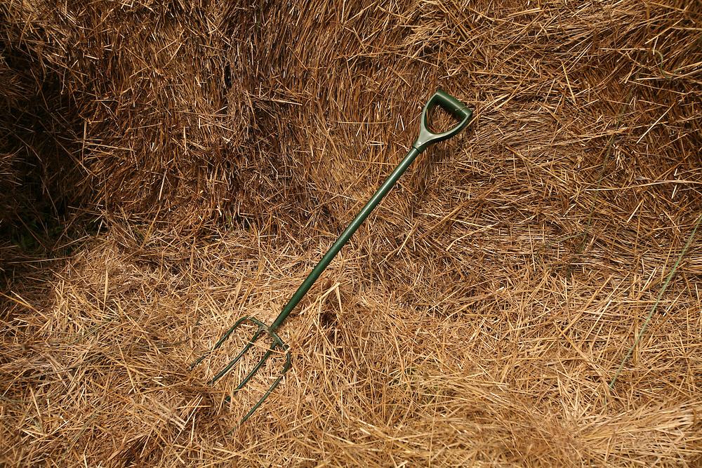 Pittsboro, NC - May 13: A pitchfork in hay bales at the farm at Circle Acres. (Photo by Logan Mock-Bunting)