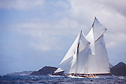 Elena of London Sailing in the 2011 St. Barths Bucket Race 2.