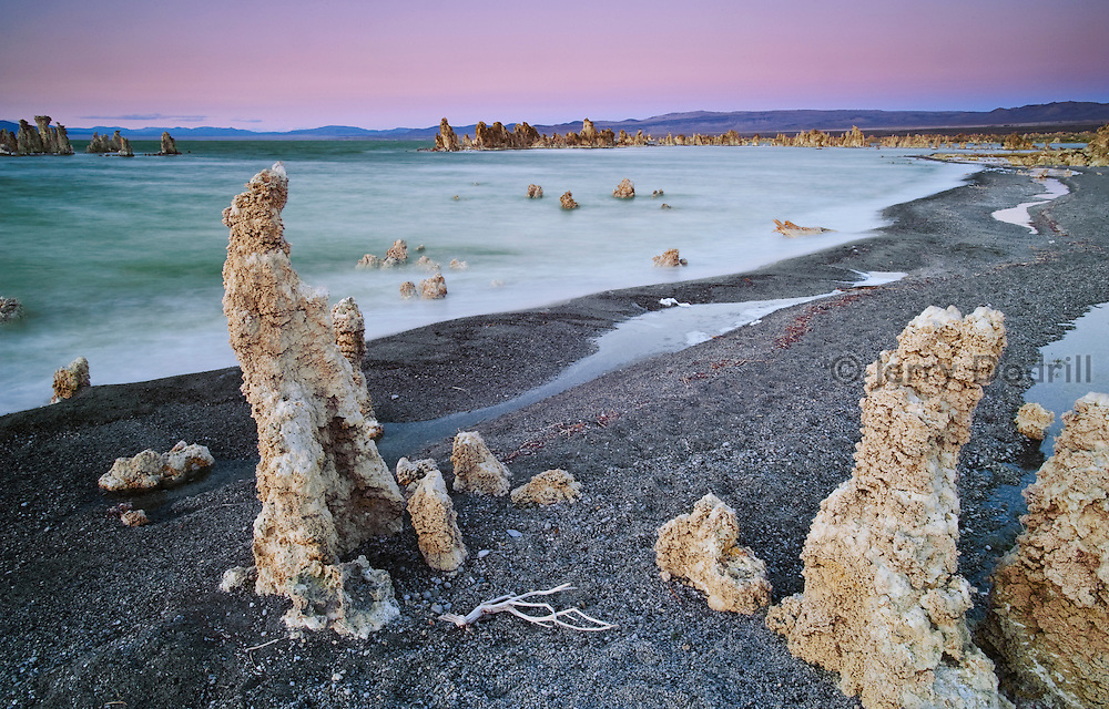 The strange tufa towers at Mono Lake State Natural Reserve were formed underwater by calcium carbonate deposites when fresh water springs bubbled up into this extremely alkaline inland sea. The lake,  2.5 times more salty than the sea,has since receded due to Sierra meltwater being diverted for pubic use by the Los Angeles Department of Water and Power.
