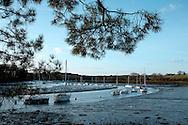 Bateaux à marée basse, presqqu'ile de Conleau, Vannes, Bretagne, France.