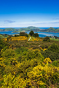 Otago Peninsula and Harbor from Mount Cargill, Otago, South Island, New Zealand
