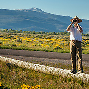 A Teton Teton Science Schools wildlife tour stops to explore the balsamroot flowers along the Antelope Flats Road in Grand Teton National Park, Wyoming.(Sean Baker)