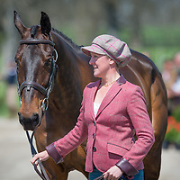 RK3DE 2015 - First Horse Inspection