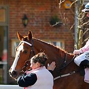 Paloma's Prince and Matthew Davies winning the 4.00 race