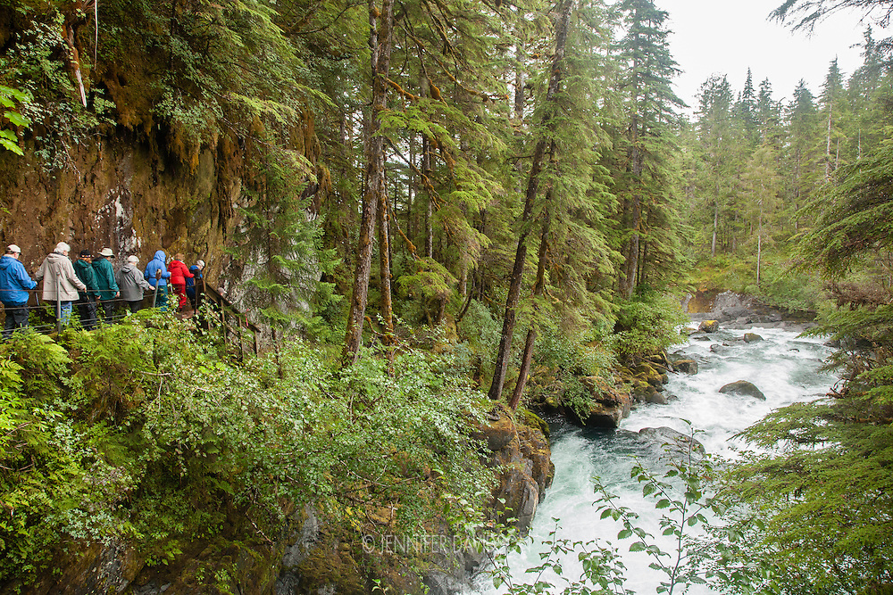 Guests from the National Geographic Sea Lion photograph during a hike in the forest along Cascade Creek, Southeast Alaska.