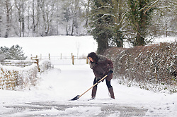 Licensed to London News Pictures 28/01/2018<br /> A woman clears snow from her drive way in Harrogate, North Yorkshire<br /> Photo Credit: Sam Atkins/LNP