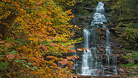 Waterfall at the Ganoga Glen at Ricketts Glen State Park