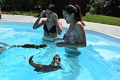 3-25-17 1:00 Otter Swim