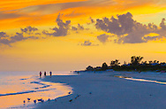 Gulf of Mexico beach at sunset with beachgoers and beach birds (Royal Terns, Sandwich Terns, Black=bellied Plovers, etc.), Sanibel Island, Florida