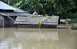 August 15, 2017 - Guwahati, India - A house being submerged by flood water at Lahorighat in Morigaon District of Assam on Tuesday, August 15, 2017. .Villagers using boat to travel as the flood situation is deteriorating Kathoni village at Lahorighat in Morigaon District of Assam on Tuesday, August 15, 2017. (Credit Image: © Rajib Jyoti Sarma/Pacific Press via ZUMA Wire)