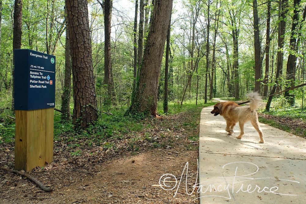 Everegreen Nature Preserve trails