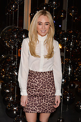 LONDON, ENGLAND 6 DECEMBER 2016: <br /> Nicola Hughes at the Fabergé Visionnaire DTZ Launch held on the 39th Floor Penthouse, South Bank Tower, Upper Ground, London, England. 6 December 2016.