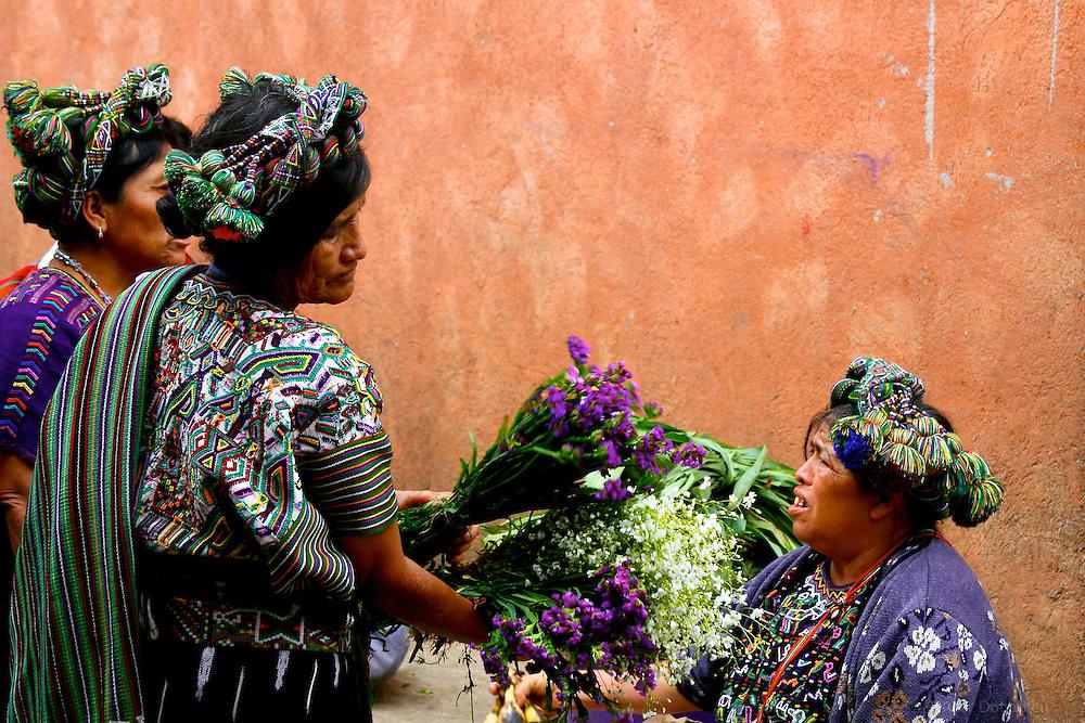 March&eacute; aux fleurs, Nebaj, Guatemala 2008.<br /> <br /> Le jeudi  &agrave; Nebaj, petit village quich&eacute; de l'Altiplano guat&eacute;malt&egrave;que, se tient le march&eacute;. On y trouve de tout et m&ecirc;me des fleurs cueillies dans les montagnes environnantes.