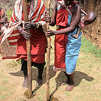 Africa, Kenya, Maasai Mara. Maasai women demonstrate establishing ground for building home in the boma, a task performed by the wives.