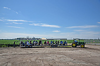 Northeast AgExpo attendees tour soy bean fields.
