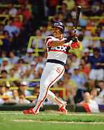 CHICAGO - 1986:  Luis Salazar of the Chicago White Sox bats during an MLB game at Comiskey Park in Chicago, Illinois during the 1986 season . (Photo by Ron Vesely)  Subject:   Luis Salazar