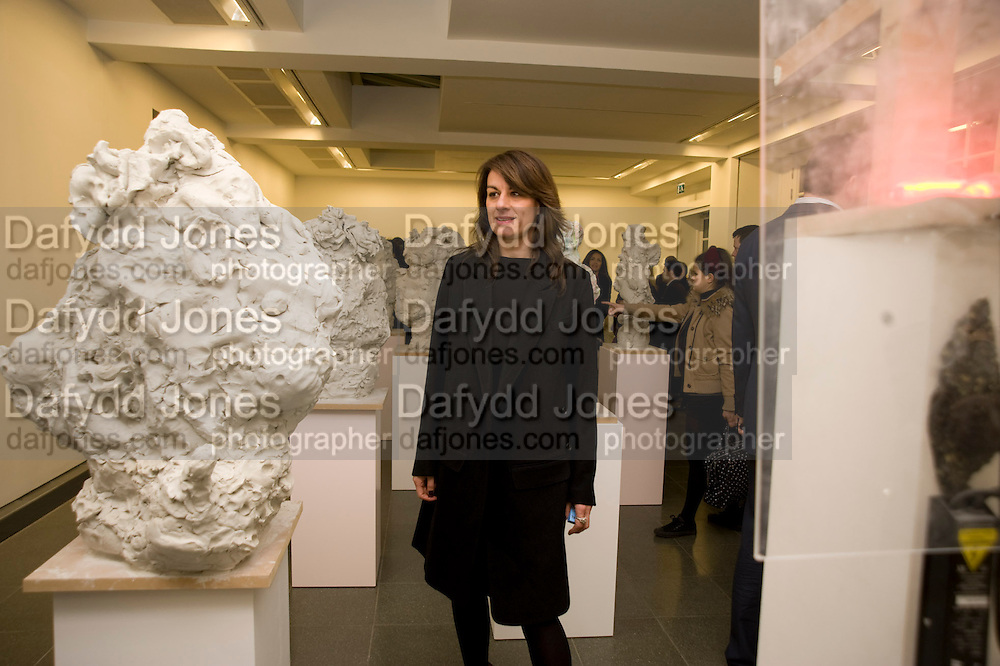 REBECCA WARREN, Rebecca Warren exhibition opening at the Serpentine Gallery. London.  9 March  2009 *** Local Caption *** -DO NOT ARCHIVE -Copyright Photograph by Dafydd Jones. 248 Clapham Rd. London SW9 0PZ. Tel 0207 820 0771. www.dafjones.com<br /> REBECCA WARREN, Rebecca Warren exhibition opening at the Serpentine Gallery. London.  9 March  2009