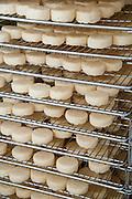 Käse in der Herstellung, Käserei Molkerei Hüttenthal, Mossautal, Odenwald, Naturpark Bergstraße-Odenwald, Hessen, Deutschland | cheese dairy Molkerei Hüttenthal, Mossautal, Odenwald, Hesse, Germany