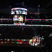 Chicago_Bulls_United_Center