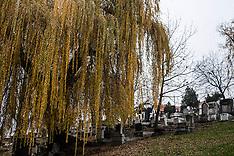 Sarajevo - Cimitero Ebraico