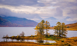 Loch Arklet, Loch Lomond & The Trossachs National Park, Scotland<br /> <br /> (c) Andrew Wilson | Edinburgh Elite media