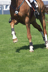 Legs<br />  CSIO Sankt Gallen 2005<br /> Photo © Hippo Foto