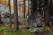 Fall in NW Montana Kootenai Country
