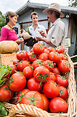 Farmers Market - Stock Photography