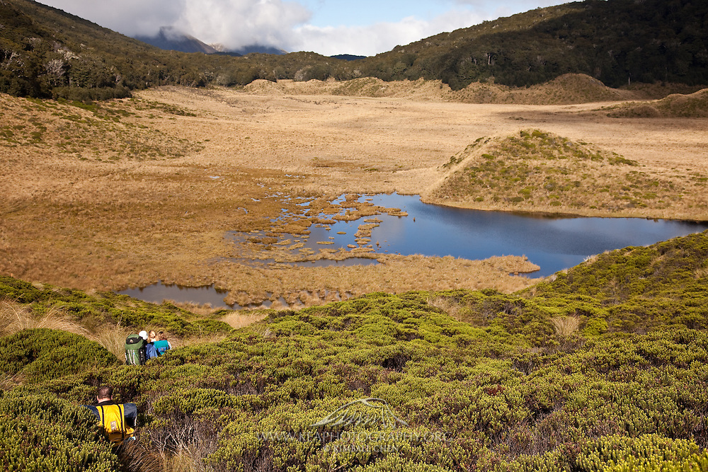 Trampers on the Green Lake Track, Fiordland, New Zealand