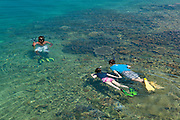 Couple on honeymoon snorkeling with local guide on coral reef of Taveuni Island during visit to Civa Fiji Pearls Ltd. from Matangi Private Island Resort, Fiji.