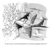 """""""Yes, there's always a certain amount of disturbance as one actually goes THROUGH the sound barrier."""""""