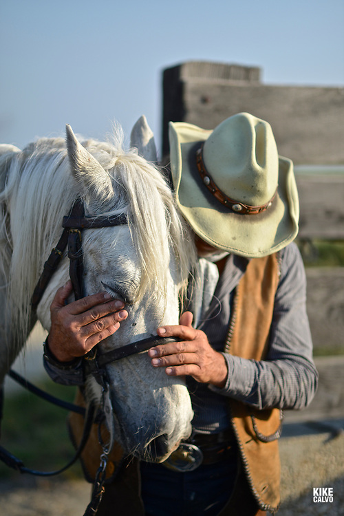 Camague Gardian, a mounted cattle herdsman in the Camargue delta in Provence, southern France.