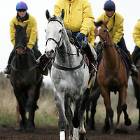 Jockey Peter Buchanan who will ride Strong resolve in the Grand National, rides the horse at trainer Lucinda Russell's gallops in Milnathort, Perthshire.<br />