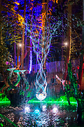 A responsive water sculpture in the Solas area, illuminated at night - The 2017 Latitude Festival, Henham Park. Suffolk 14 July 2017