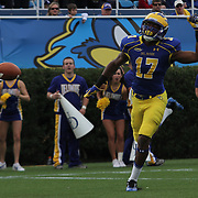 Delaware Wide receiver Michael Johnson (17) reacts to a overthrown ball during a Week 6 NCAA football game against Maine University.