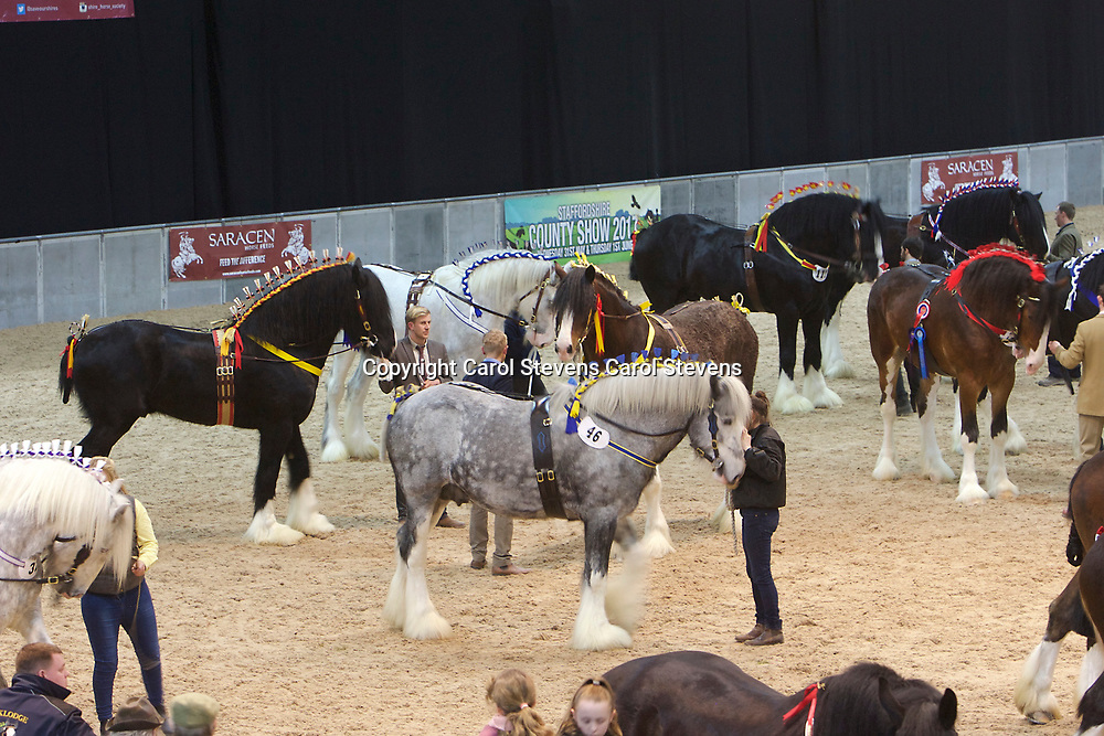 Shire Horse Society Spring Show 2017  Saturday Grand Parade
