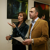 """Peter and Liz Matthews at the ofening of Carmel Doherty's Exhibition """"Sence of Place"""" at the Ennis Art Gallery on Friday evening.<br /><br />Photograph by Eamon Ward"""