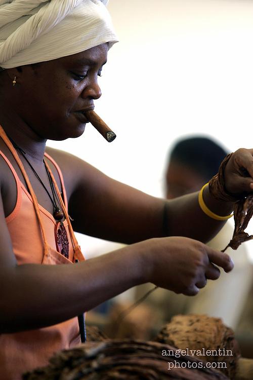 (aev) cubacigars02h------Havana, Cuba-----3.2.07-----<br /> Cigar worker Ofelia Lugo, 40, strips tobacco leaves in Havana's H. Upmann cigar factory. <br /> Staff Photo/Angel Valentin