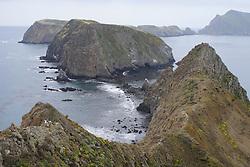 Channel Islands (Anacapa Island)