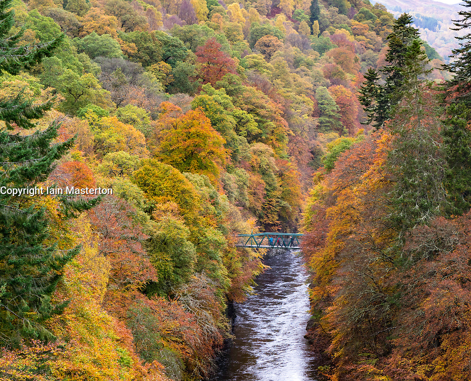 Spectacular autumn colours in natural woodland on banks of River Garry at historic Pass of Killiecrankie near Pitlochry.