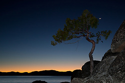 """Tree and Tahoe Sunset 1"" - This tree, sunset, and sliver of a moon were photographed near Secret Cove beach, Lake Tahoe."