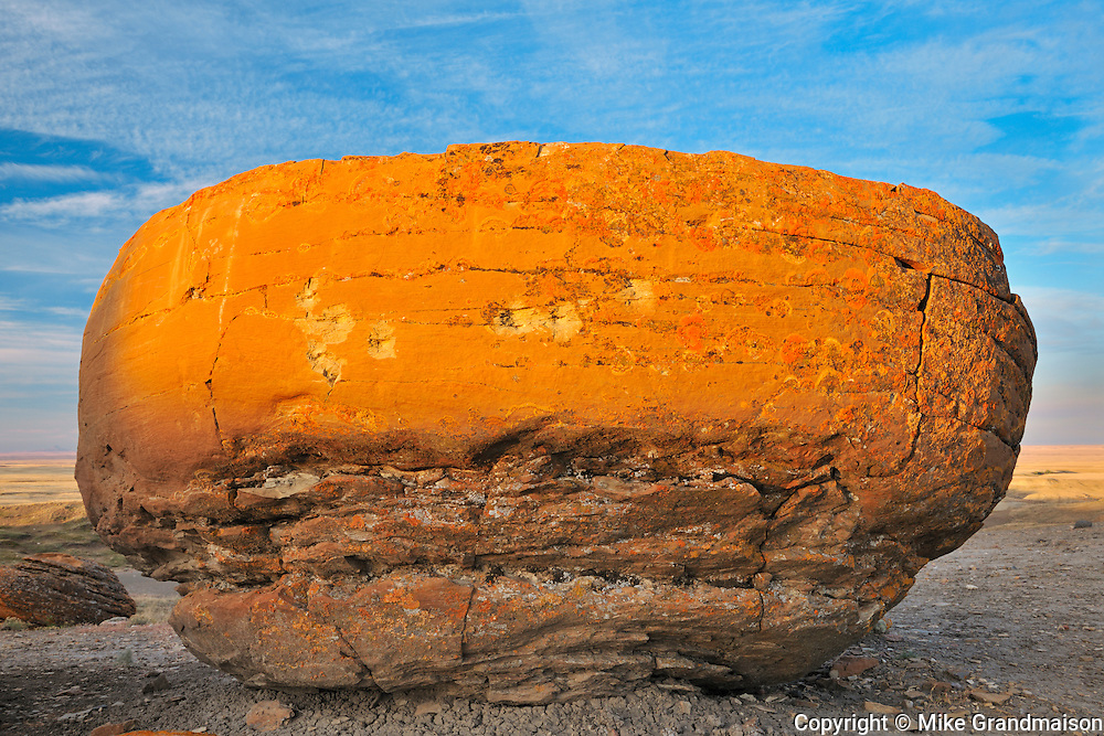 Sandstone  concretion<br /> Red Rock Coulee Natural Preserve<br /> Alberta<br /> Canada