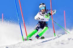 KIIVERI Santeri, LW6/8-1, FIN, Slalom at the WPAS_2019 Alpine Skiing World Cup, La Molina, Spain