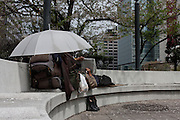 A homeless man rests on a bench in  small park checking gambling odds in a newspaper while shielded under an umbrella. Tokyo, Japan. Friday April 13th 2012