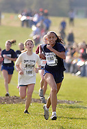 Warwick , N.Y. - Runners head for the finish line during a girls' race at the New York State Public High School Athletic Association cross country championships at Sanfordville Elementary School on Nov. 11, 2006.<br />